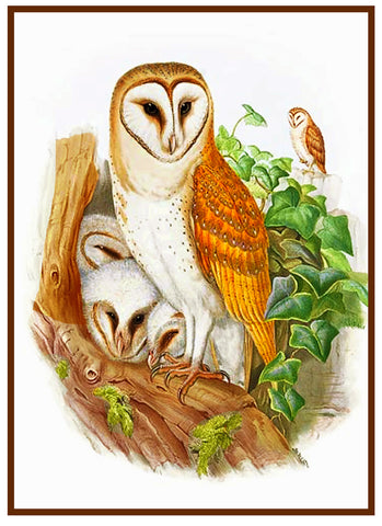 Mama Baby Owls by Naturalist John Gould of Birds Family Counted Cross Stitch Pattern DIGITAL DOWNLOAD