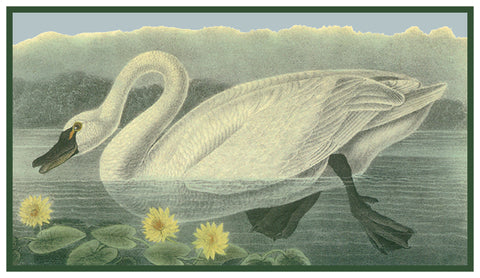 A Tundra Swan Bird Illustration by John James Audubon Counted Cross Stitch or Counted Needlepoint Pattern