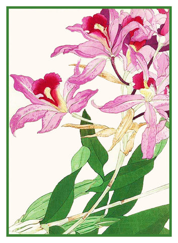 Tanigami Konan Asian Pink Lily Flower Counted Cross Stitch or Counted Needlepoint Pattern