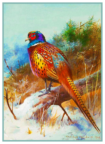 Pheasant Winter by Naturalist Archibald Thorburn BirdsCounted Cross Stitch or Counted Needlepoint Pattern