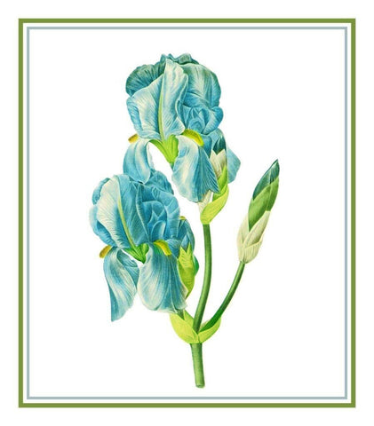 Sweet Iris Flower Bouquet Inspired by Pierre-Joseph Redoute Counted Cross Stitch Pattern