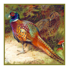 Common Pheasant Detail by Naturalist Archibald Thorburn's Bird Counted Cross Stitch  Pattern - Orenco Originals LLC