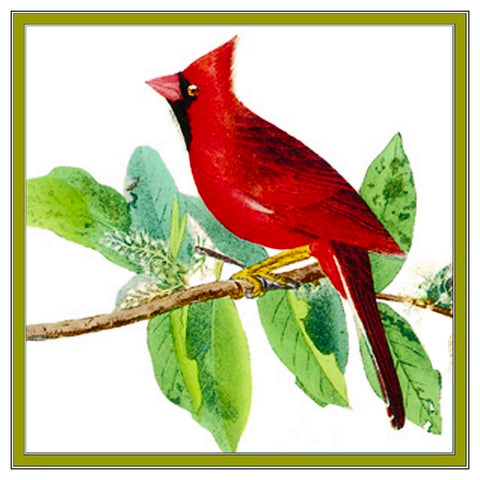 Northern Cardinal Bird Illustration by John James Audubon Counted Cross Stitch Pattern