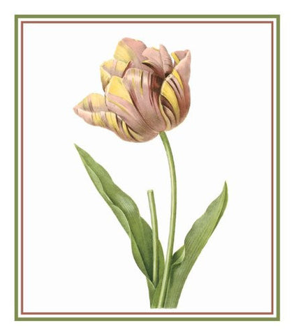 Tulip Flower Illustration inspired by Pierre-Joseph Redoute Counted Cross Stitch Pattern