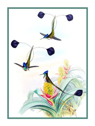 Spatula Winged Hummingbirds by Naturalist John Gould Bird Counted Cross Stitch Pattern