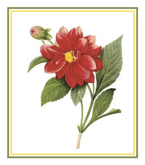 Dahlia Flower Inspired by Pierre-Joseph Redoute Counted Cross Stitch or Counted Needlepoint Pattern - Orenco Originals LLC