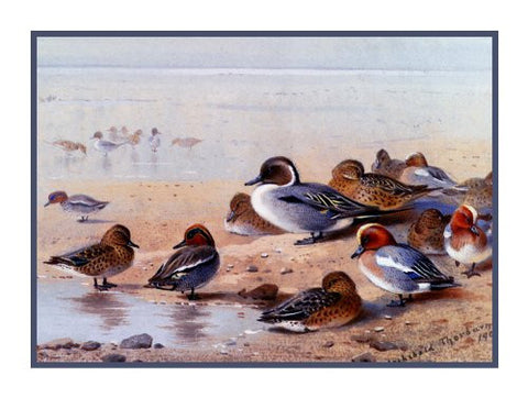 Pintail Wigeon Ducks by Naturalist Archibald Thorburn's Birds Counted Cross Stitch or Counted Needlepoint Pattern