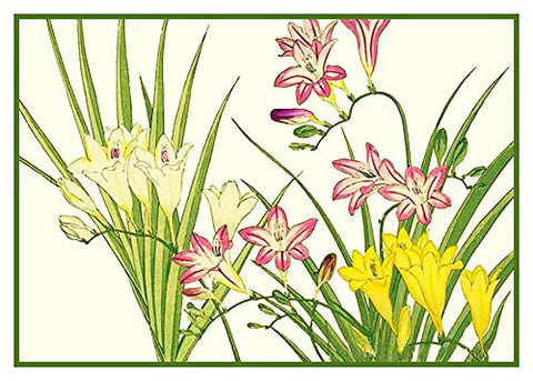 Tanigami Konan Asian Freesia Flowers Counted Cross Stitch or Counted Needlepoint Pattern