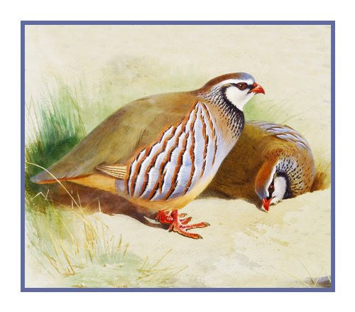 French Partridges detail by Naturalist Archibald Thorburn's Bird Counted Cross Stitch or Counted Needlepoint Pattern