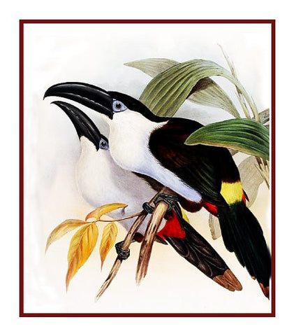 Black Billed Toucan by Naturalist John Gould of Birds Counted Cross Stitch Pattern