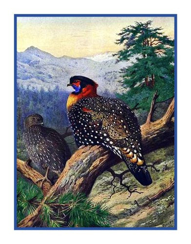 Western Tragopan Pheasant by Naturalist Archibald Thorburn's Birds Counted Cross Stitch or Counted Needlepoint Pattern