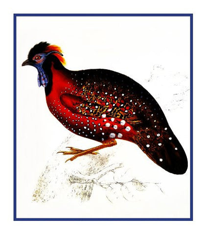 Crimson Horned Pheasant by Naturalist John Gould Birds Counted Cross Stitch Pattern