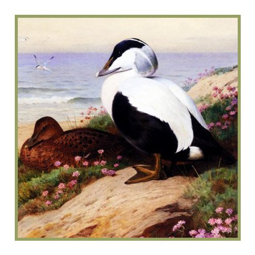 Common Eider DucksBy Naturalist Archibald Thorburn's Bird Counted Cross Stitch or Counted Needlepoint Pattern