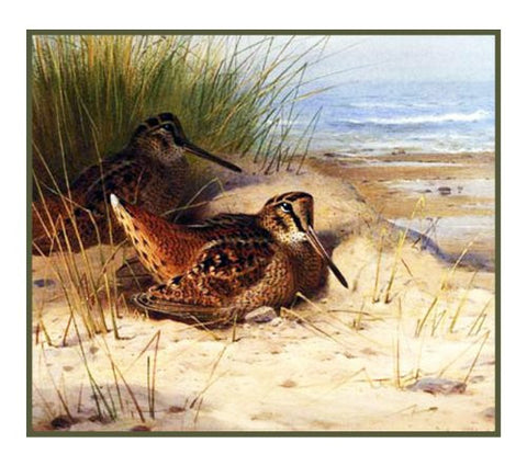 Woodcock Nesting on the Beach by Naturalist Archibald Thorburn's Bird Counted Cross Stitch Pattern