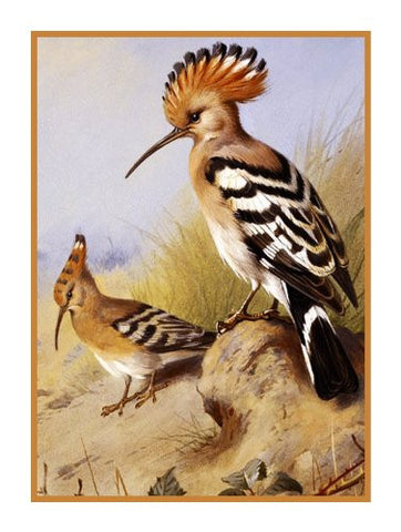 Crested Hoopoes By Naturalist Archibald Thorburn's Birds Counted Cross Stitch or Counted Needlepoint Pattern