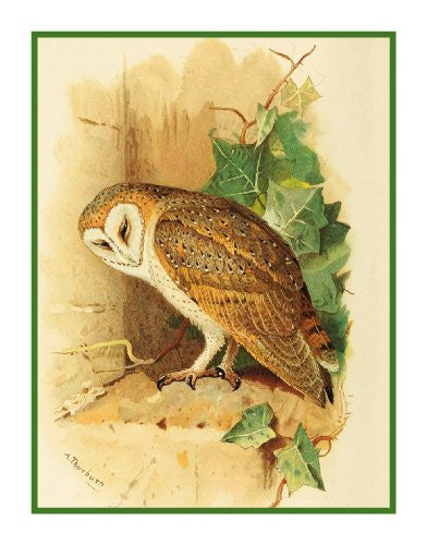 Barn Owl Detail By Naturalist Archibald Thorburn's Bird Counted Cross Stitch or Counted Needlepoint Pattern - Orenco Originals LLC