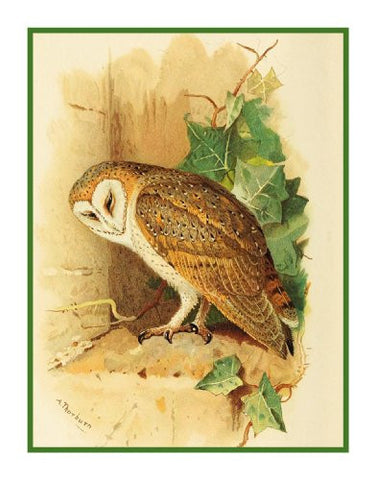 Barn Owl Detail By Naturalist Archibald Thorburn's Bird Counted Cross Stitch or Counted Needlepoint Pattern