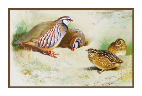 French Partridges and Chicks by Naturalist Archibald Thorburn's Birds Counted Cross Stitch or Counted Needlepoint Pattern