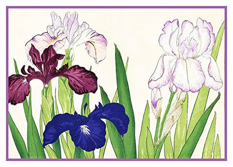 Tanigami Konan Asian Iris Flowers Counted Cross Stitch or Counted Needlepoint Pattern
