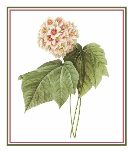 Pink Snowball Flower Inspired by Pierre-Joseph Redoute Counted Cross Stitch or Counted Needlepoint Pattern