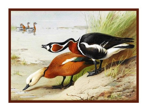 Duck and Goose by Naturalist Archibald Thorburn's Birds Counted Cross Stitch or Counted Needlepoint Pattern