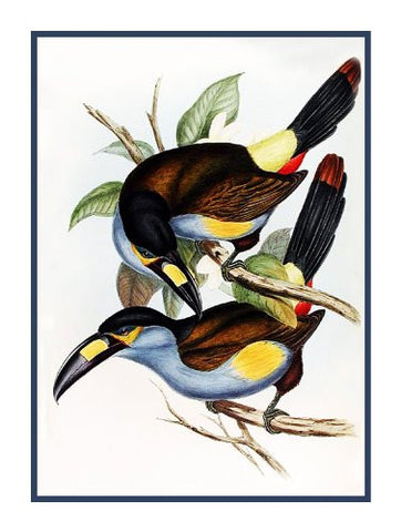 Mountain Toucans by Naturalist John Gould of Birds Counted Cross Stitch Pattern