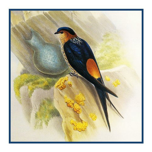 Red Rumped Swallow Detail by Naturalist John Gould Birds Counted Cross Stitch or Counted Needlepoint Pattern