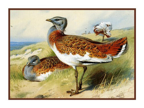 Great Bustard Ducks by Naturalist Archibald Thorburn's Birds Counted Cross Stitch or Counted Needlepoint Pattern