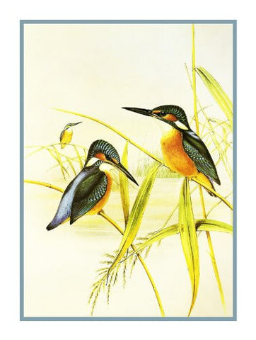 Common Kingfishers by Naturalist John Gould Birds Counted Cross Stitch Pattern