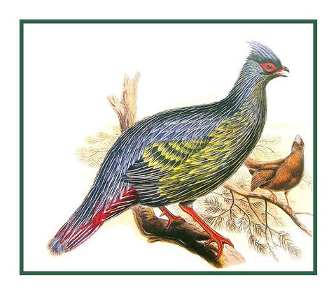 Blood Tragopan Pheasant by Naturalist John Gould Birds Counted Cross Stitch Pattern