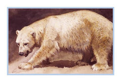 Polar Bear By Naturalist Archibald Thorburn's Animal Counted Cross Stitch or Counted Needlepoint Pattern