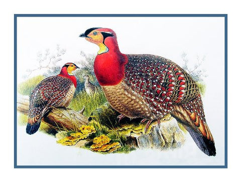 Blyth Wood Pheasant by Naturalist John Gould Birds Counted Cross Stitch or Counted Needlepoint Pattern