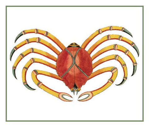 Fallours' Renard's Fantastic Colorful Tropical Crab 4 Counted Cross Stitch Pattern