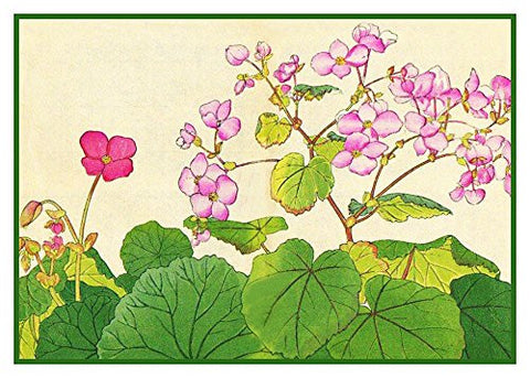 Tanigami Konan Asian Begonia Flowers Counted Cross Stitch or Counted Needlepoint Pattern