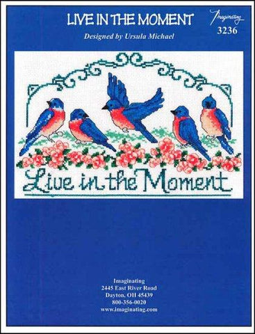 Live In The Moment by Imaginating Counted Cross Stitch Pattern