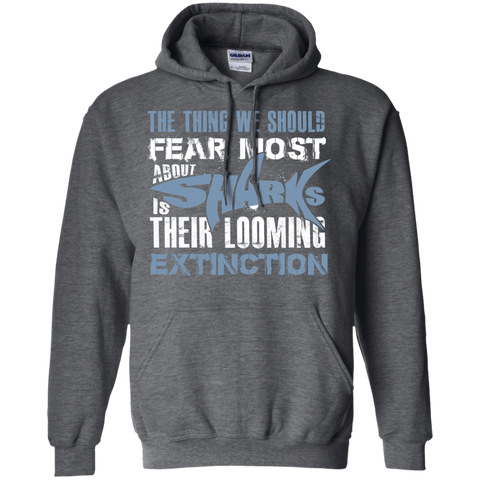 The Thing we Should Fear Most About Sharks is Their Looming Extinction Hoodie
