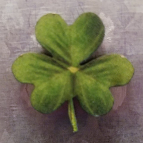 Small Shamrock Magnet