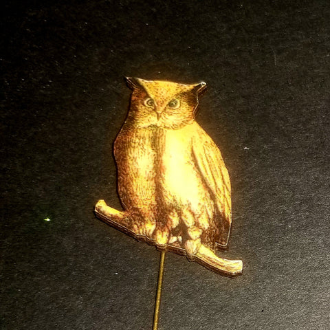Owl Stick Pin