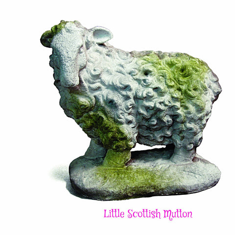 Little Scottish Mutton