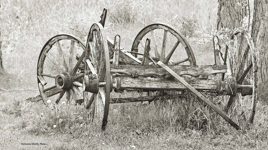 Rustic Wagon Black and White Photo Coasters - Set/4