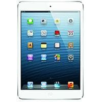 Apple iPad mini Parts