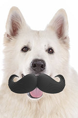 Dog Mustache Play Toy - GoGetGlam Boho Style