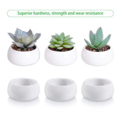 3pc Succulent Planter 3-Tier Bamboo Stand - GoGetGlam Boho Style