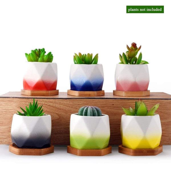 6 PC Hexagon Ceramic Succulent Planters with Bases - GoGetGlam Boho Style