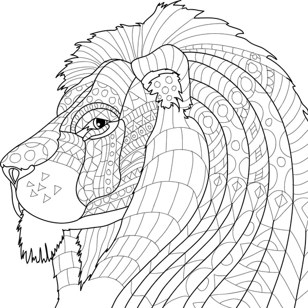 Color To Calm Adult Coloring Book with Pencils - Animals-GoGetGlam