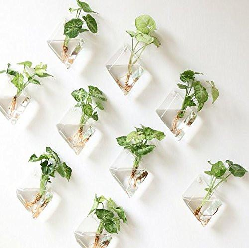 Hanging Glass Decorative Terrariums Planters-GoGetGlam