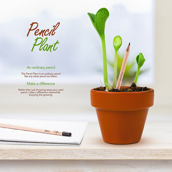 Plant and Grow: A Pencil That Can Grow Into a Plant!-GoGetGlam
