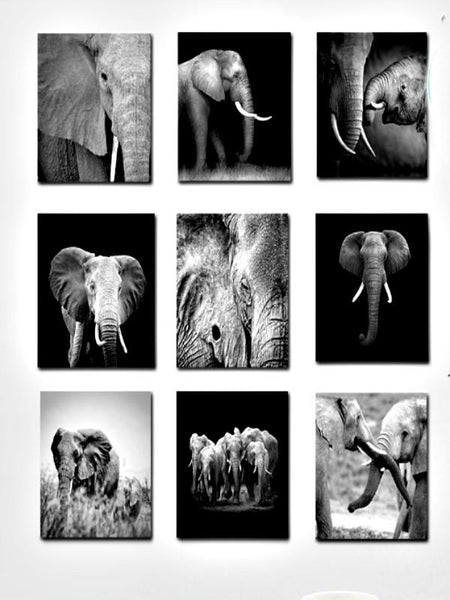 Set of 9 Elephant Habitat Prints-GoGetGlam