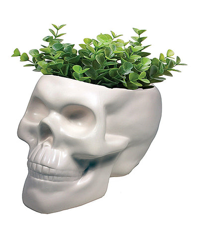 White Skull Planter - Boho Bohemian Decor