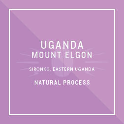 Uganda Mount Elgon Natural